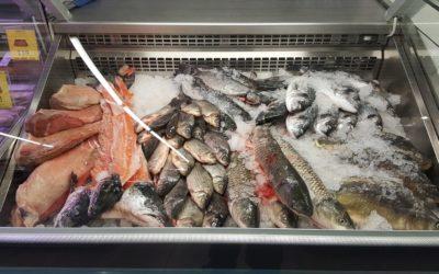 Frischfisch im Frischmarkt Gifhorn