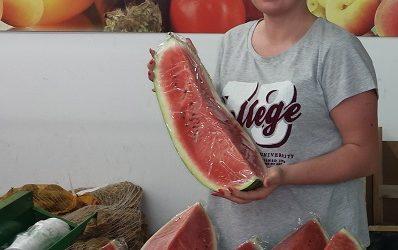 Leckere Wassermelonen im Frischmarkt Gifhorn…