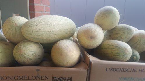 Usbekische Honigmelonen in Frischmarkt Gifhorn